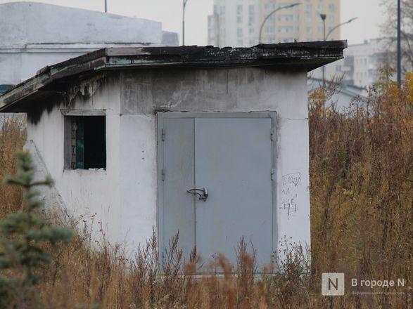 Нижегородская Стрелка: между прошлым и будущим - фото 28