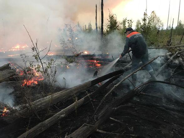 50 нижегородских пожарных помогают тушить заповедник в Мордовии - фото 2