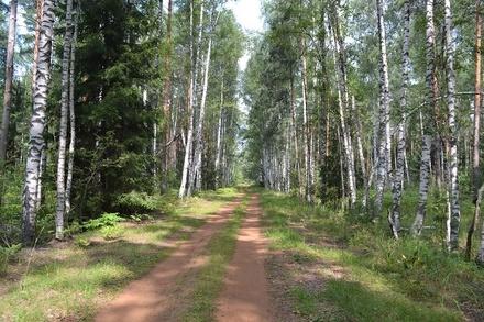 В Нижегородской области начали подготовку к пожароопасному сезону 2019 года