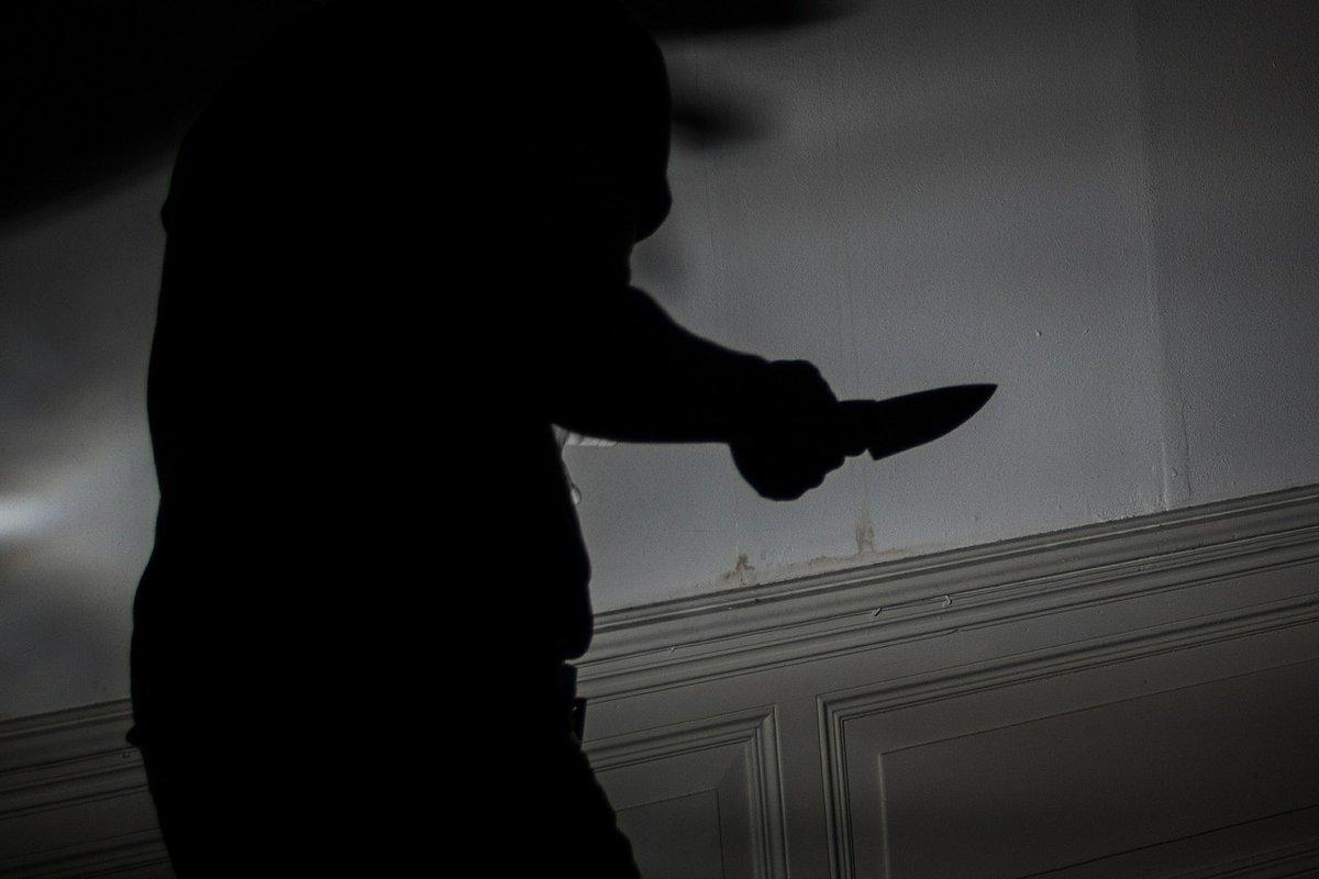 Дело семеновского браконьера, напавшего с ножом на егеря, направили в суд - фото 1
