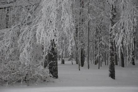 Нижегородцев ждут снегопады и потепление