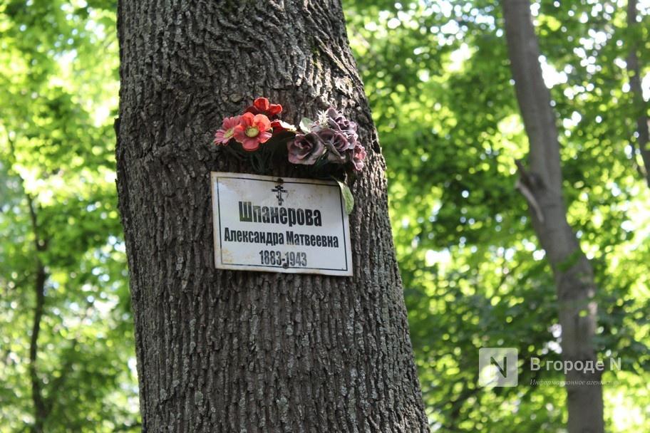 Конфликт на костях: за и против строительства храма на улице Родионова - фото 9
