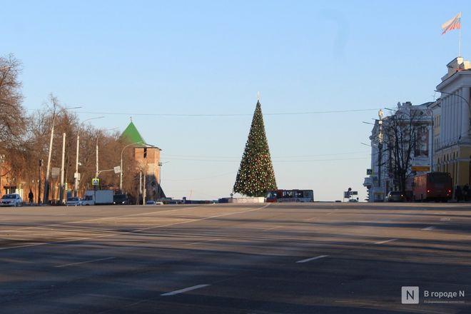 Главную городскую елку нарядили в Нижнем Новгороде - фото 2