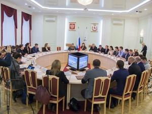 Городской совет создадут при Общественной палате Нижнего Новгорода