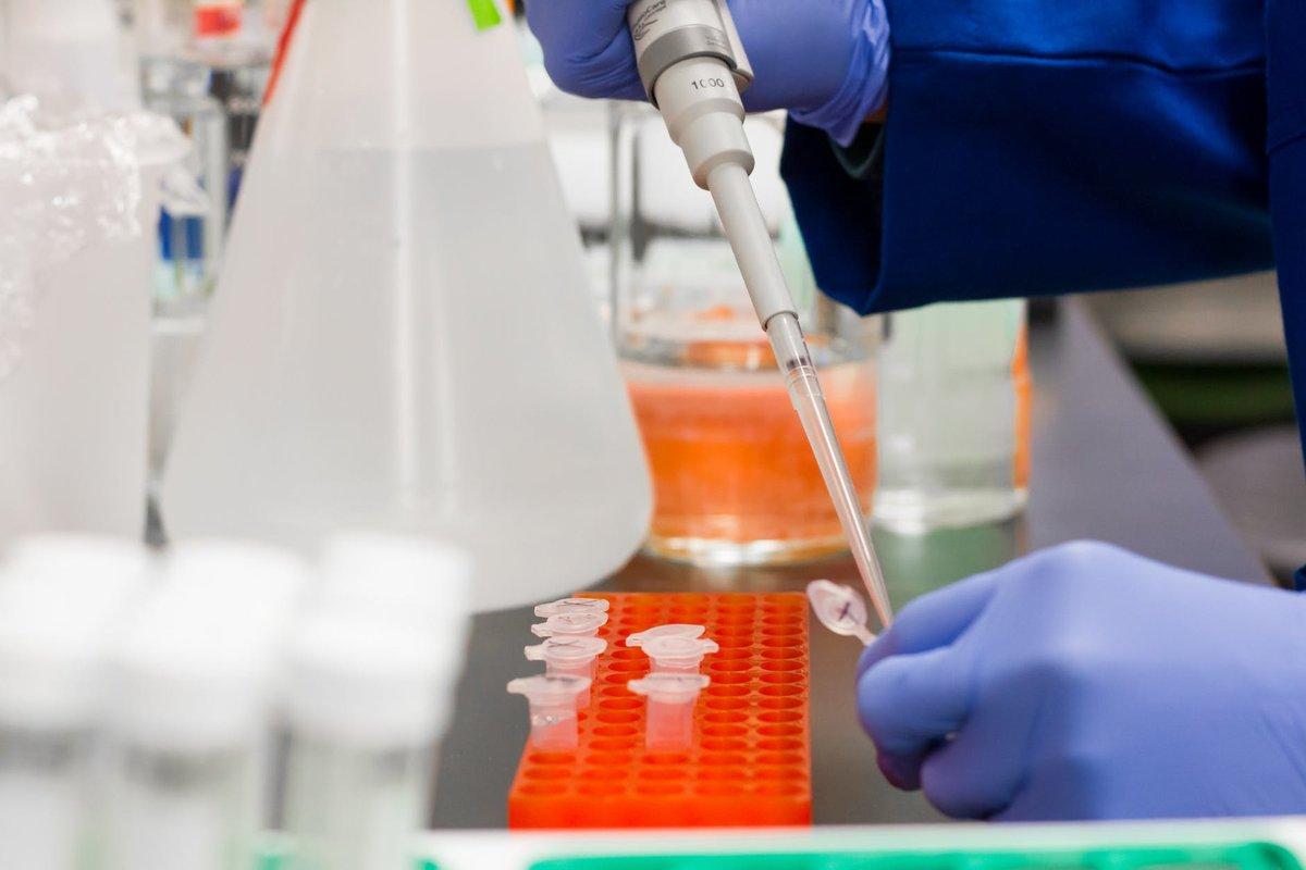 Все, что нужно знать о китайском коронавирусе 2019‑nCoV  - фото 2