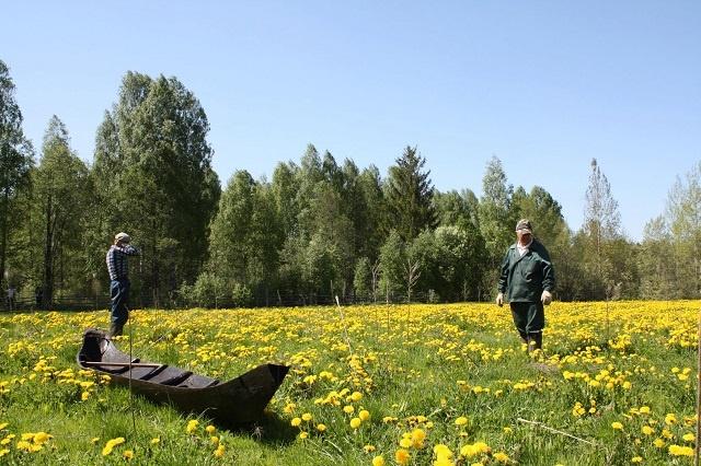 Посетители Керженского заповедника смогут узнать о рустайской «кукушке» и ботнике - фото 4
