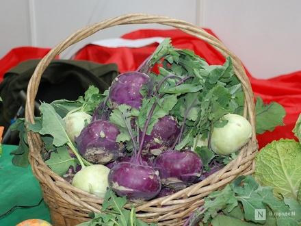 Подозрительные овощи и фрукты изъяли из продажи в Ваче