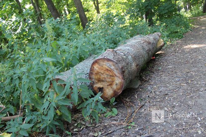 Конфликт на костях: за и против строительства храма на улице Родионова - фото 28