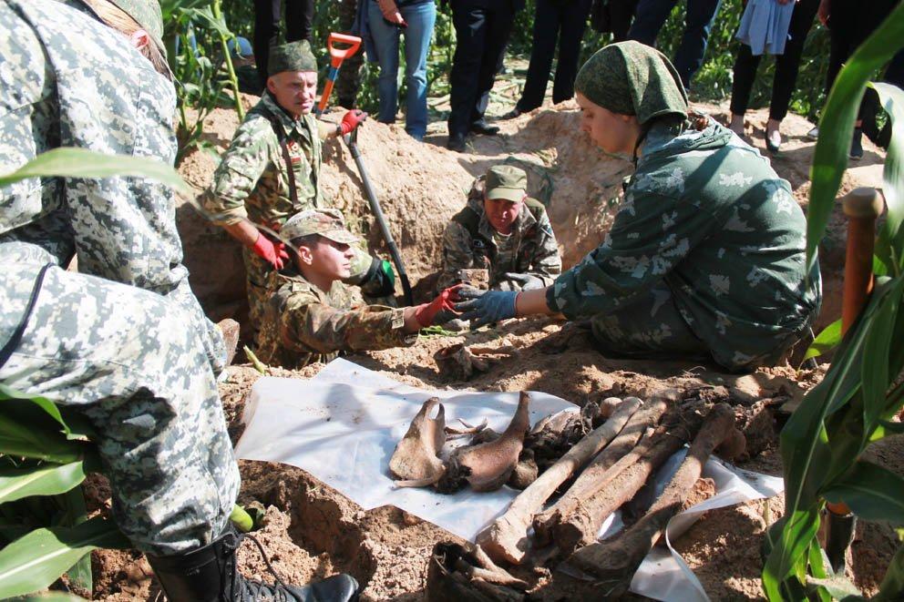 Нижегородские поисковики нашли останки красноармейцев в Беларуси - фото 2