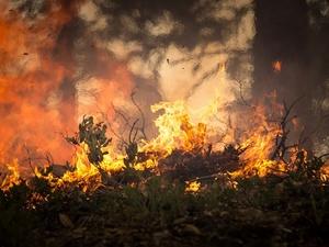 Третий класс пожароопасности установлен в 19 районах Нижегородской области