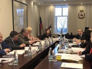 Солонченко возглавила комиссию по отбору кандидатур на пост мэра Нижнего Новгорода