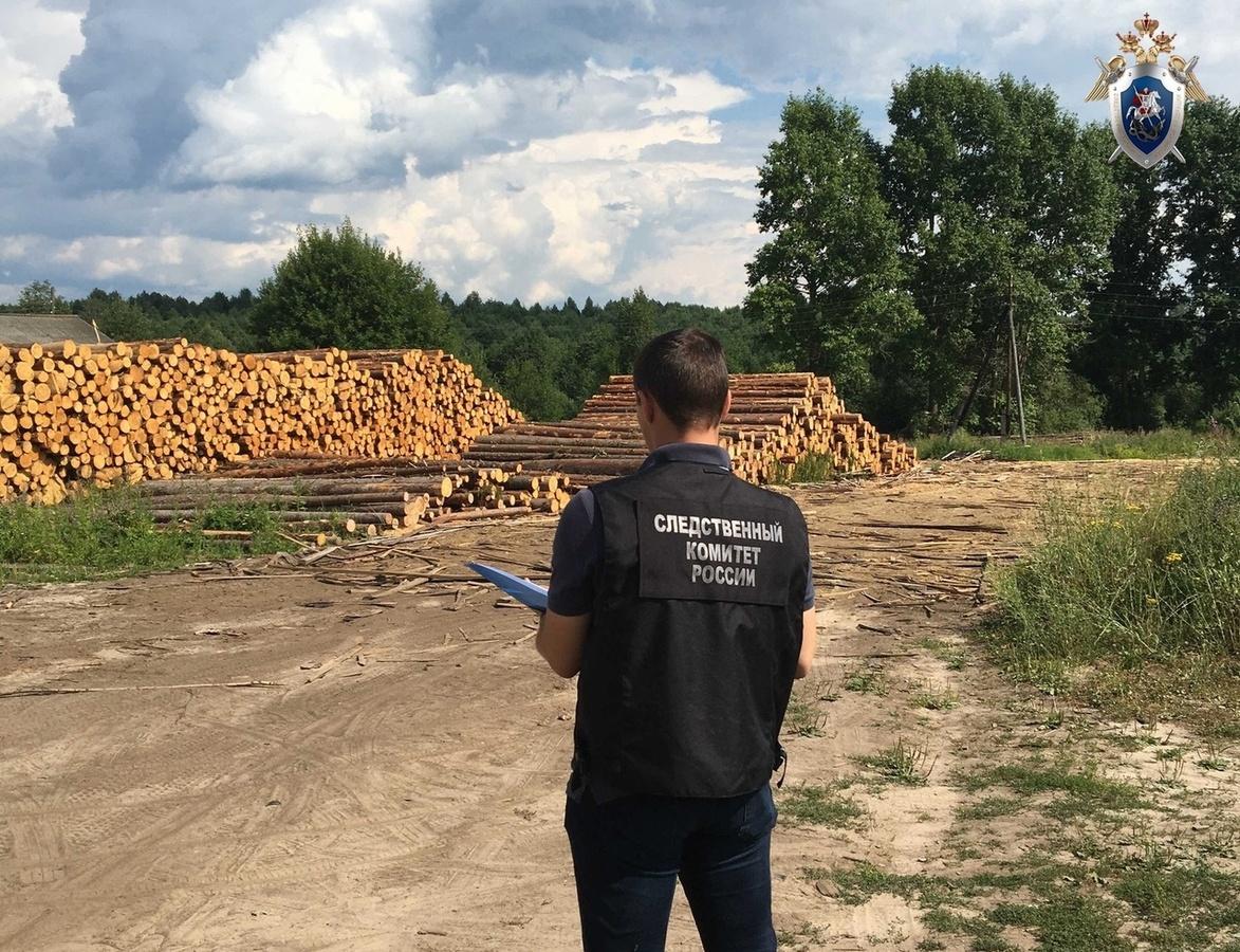 Рабочий погиб на лесопилке в Ветлужском районе - фото 1